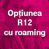 optiunea-r12-2